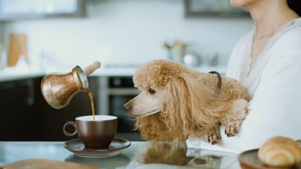 Cinemagraph - kávy do šálku. Žena se svým psem doma snídat. Živé fotografie.
