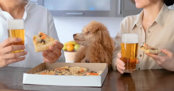 Cinemagraph -Couple with their dog eating pizza. Pizza delivery. Living Photo.