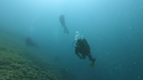 Divers underwater swimming in the sea