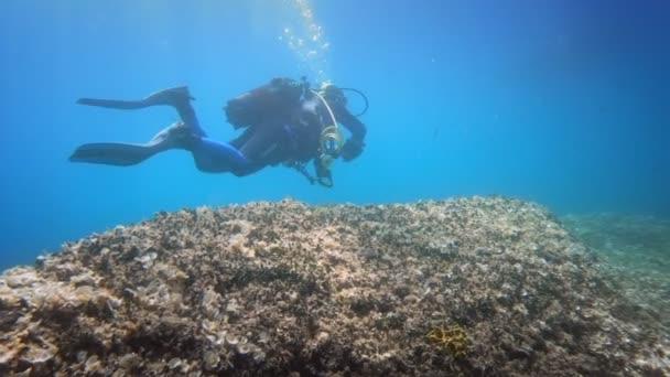 Divers underwater neer coral reef