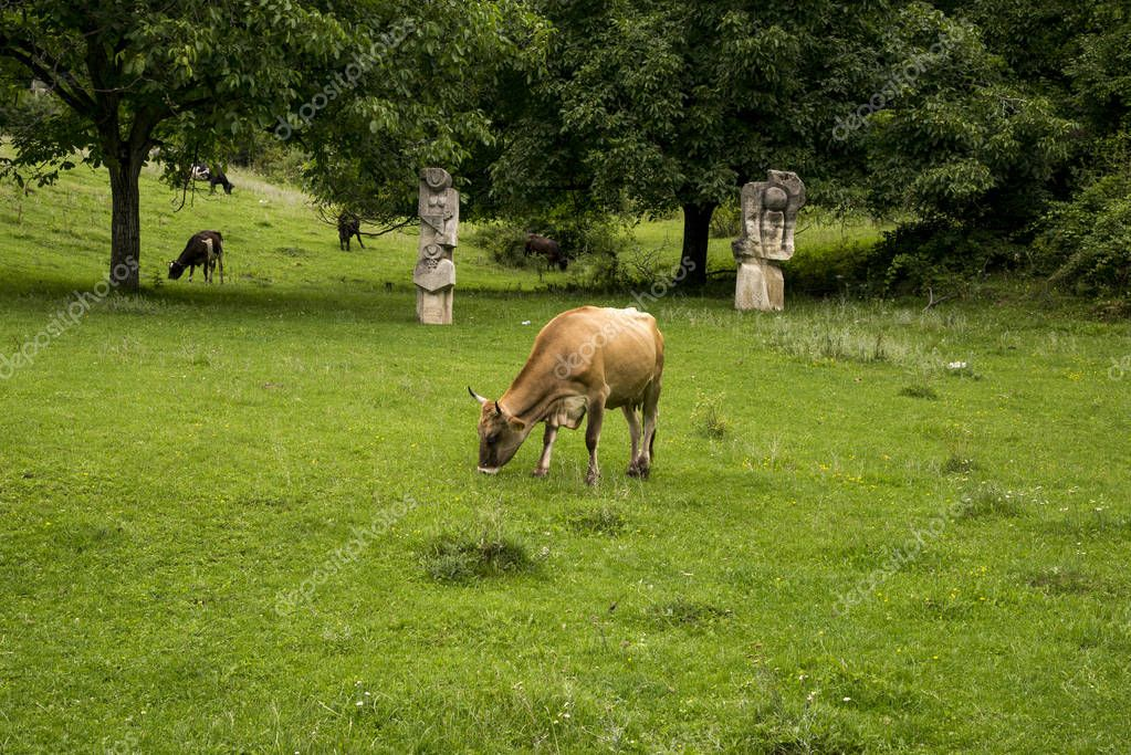 Magura Sculpture Camp - Buzau - Romania - a unique exhibition, developed outdoors, including a large number of art works scattered all over the glades on the hills - July 9 2018