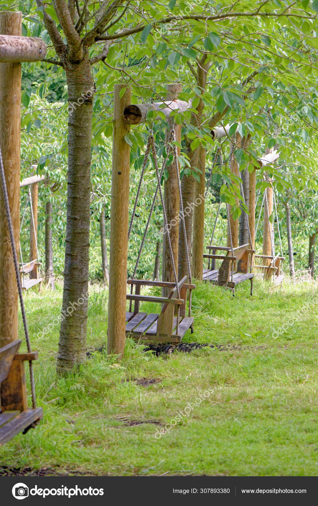 Empty Garden Tree Swings In Summer Stock Photo C Adfoto
