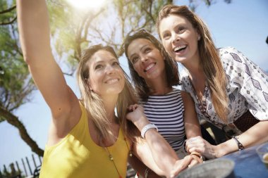 Group of girlfriends taking selfie picture at restaurant stock vector