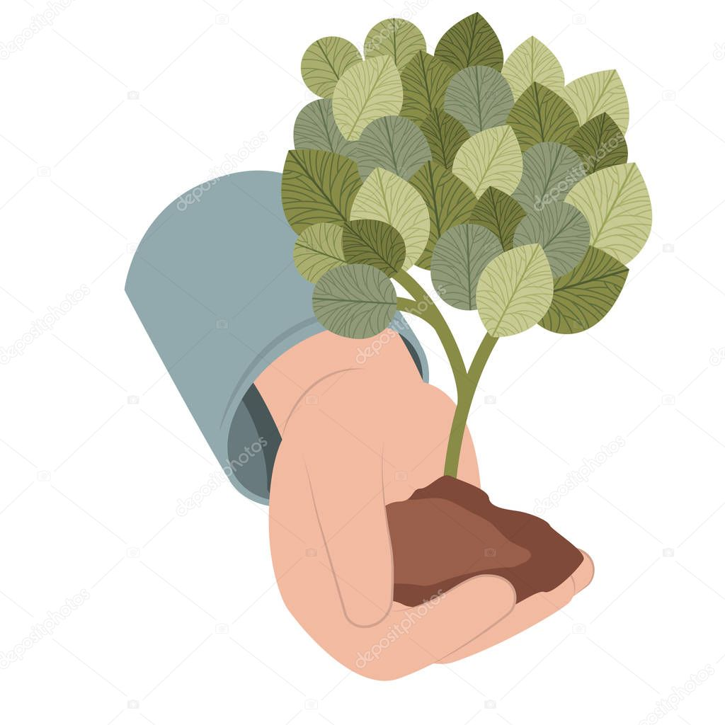 hand with tree plant isolated icon