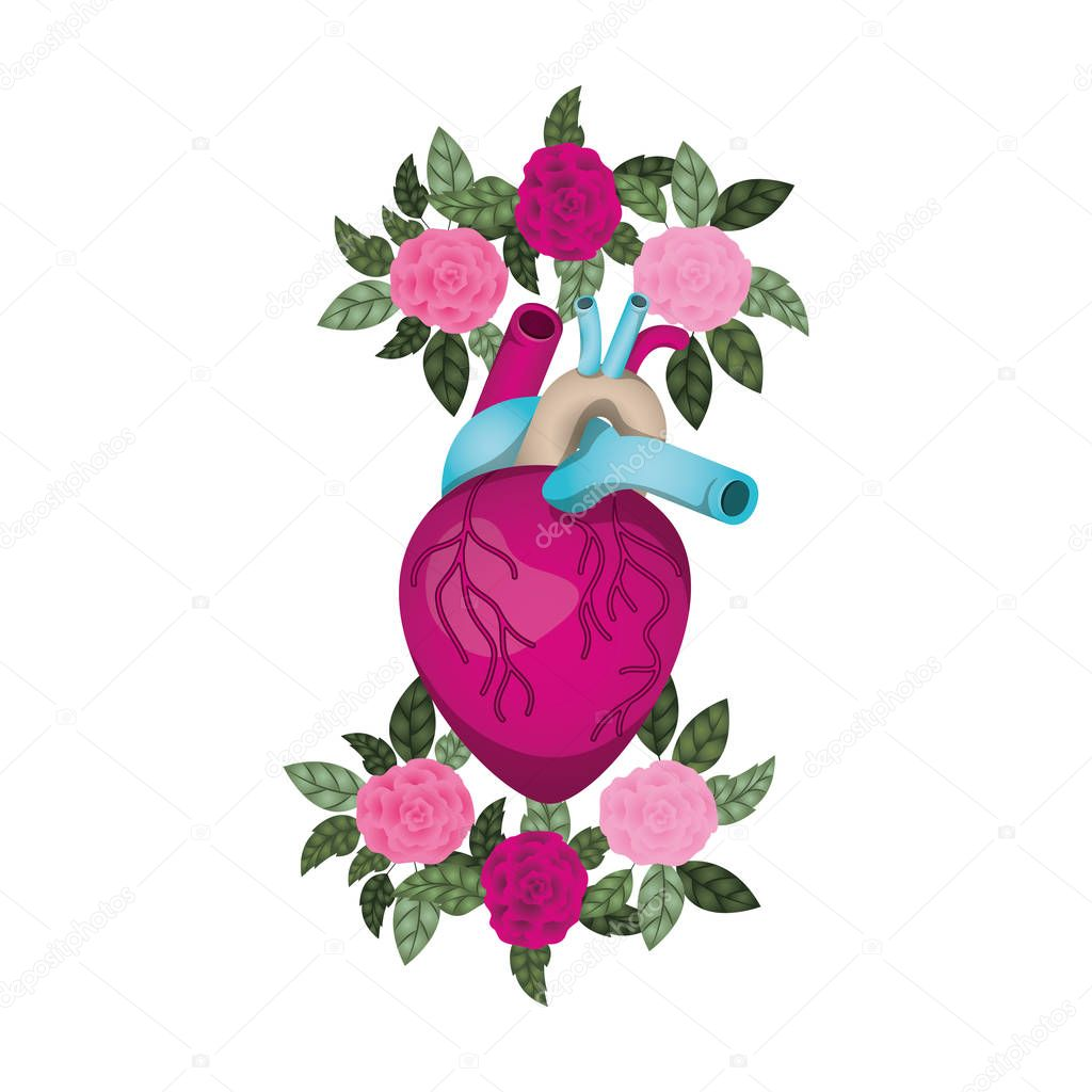 heart with veins and flowers isolated icon