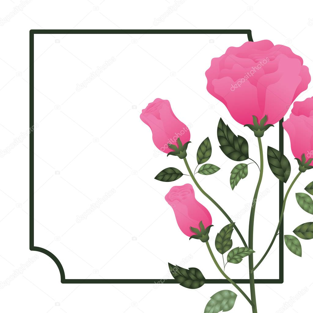 frame with rose isolated icon
