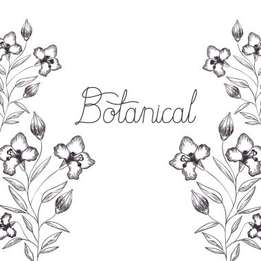botanical label with plants isolated icon