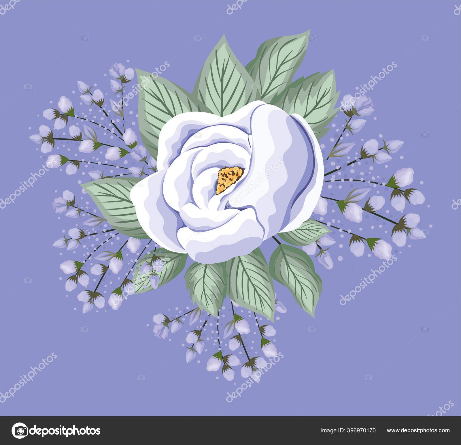 Bunga Mawar Putih Dengan Daun Lukisan Desain Vektor Stok Vektor C Grgroupstock 396970170