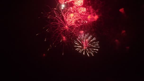 úžasný ohňostroj v noci