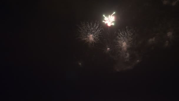 Amazing fireworks at night