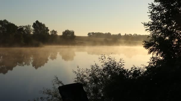 Early morning on the river. Calmness and silence. Fog spreads over the water. Black silhouettes of trees and blue sky.