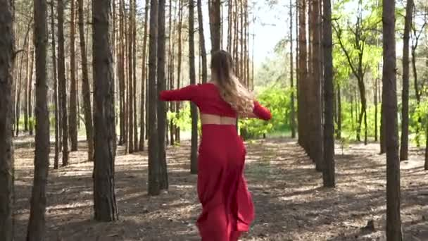 Dancer improvisation with jumps. Skill ballerina woman in red dress dancing in forest landscape. Slow motion