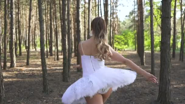Free dancer improvisation. Skill woman ballerina in white tutu dancing in forest, slow motion