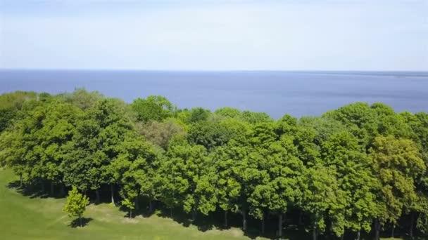 4k. Letecké. Přeletět přes zelenou louku se stromy na moři nebo na jezeře. Krajina