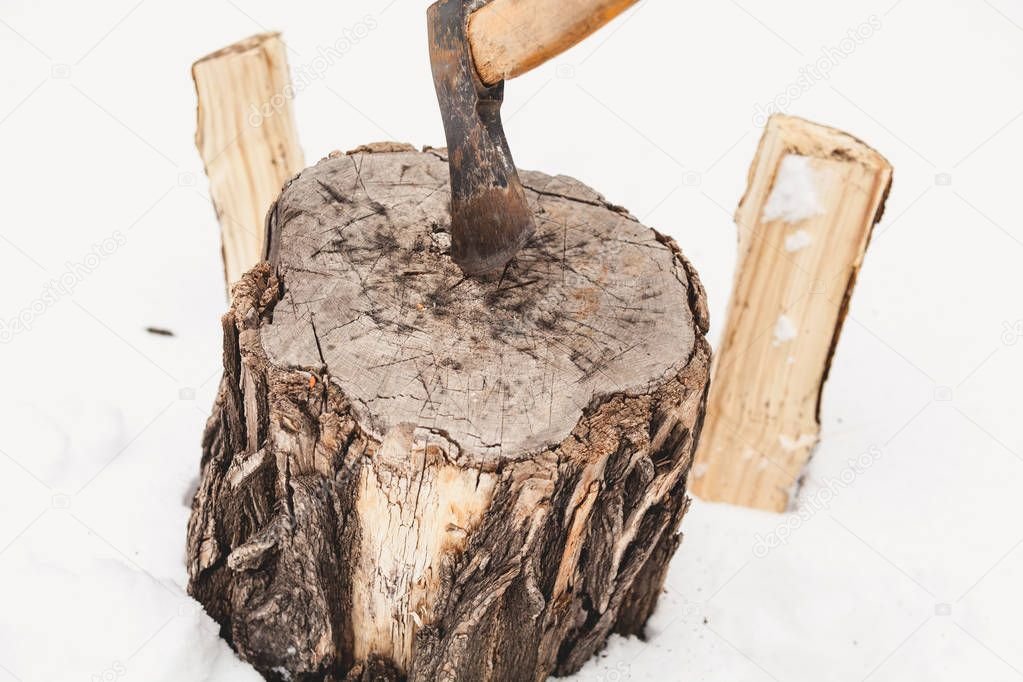 Harvesting of firewood in winter. The ax sticks out in a stump on white snow. Two halves of a split log stick out in the sno
