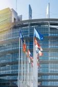 Všechny Eu vlajka Evropské unie mávání vlajkami před Evropský Parl