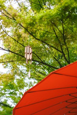 Japanese wind chimes wooden bamboo bells handed on tree in Japanese garden with red umbrella - low angle tilt-shift lens