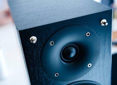 Detail of powerful wooden loudspeaker tweeter in blue tone - view from above