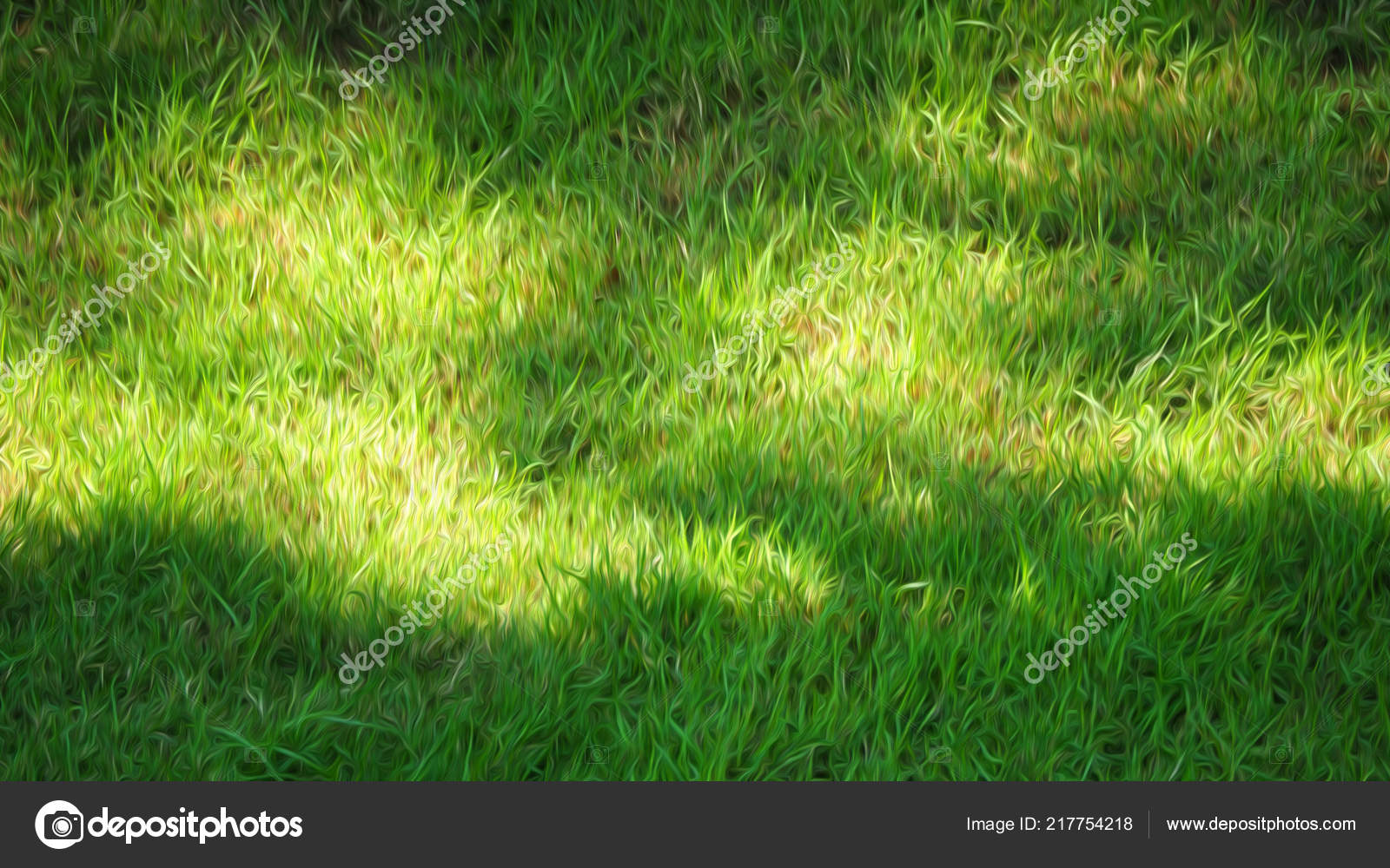 Images Floues Herbe Verte Naturelle Veritable Champ Vue