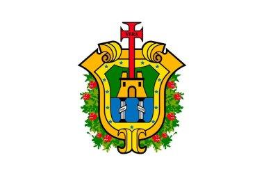 Simple flag state of Mexico, Veracruz de Ignacio