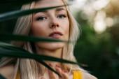 Szoros szépség portré szép fehér szőke hajú nő tiszta bőr, természetes smink, gyönyörű szemek, mögött álló trópusi levél. Függőleges lövés. Nyár, nyaralás, bőrápolás.