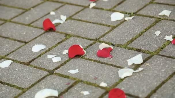 Okvětní plátky na podlaze na svatební obřad