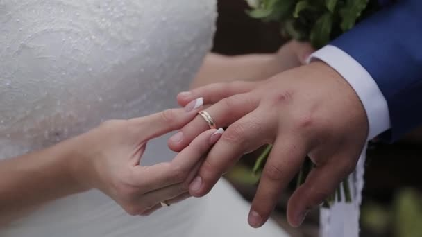 Very beautiful newlyweds put rings on each other.