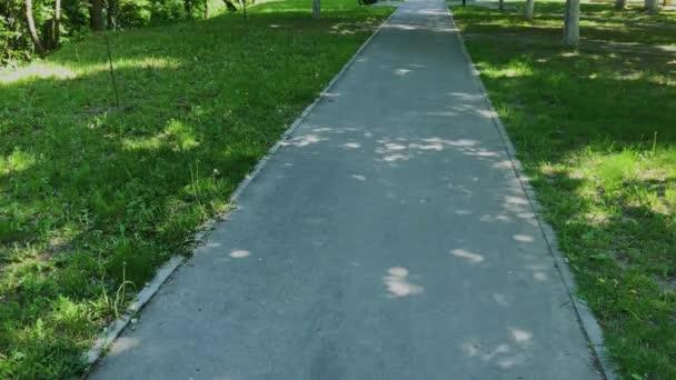 Pavingové desky v městském parku.