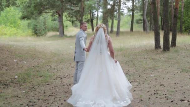 Velmi krásná nevěsta a ženich jsou procházky v lese v létě.