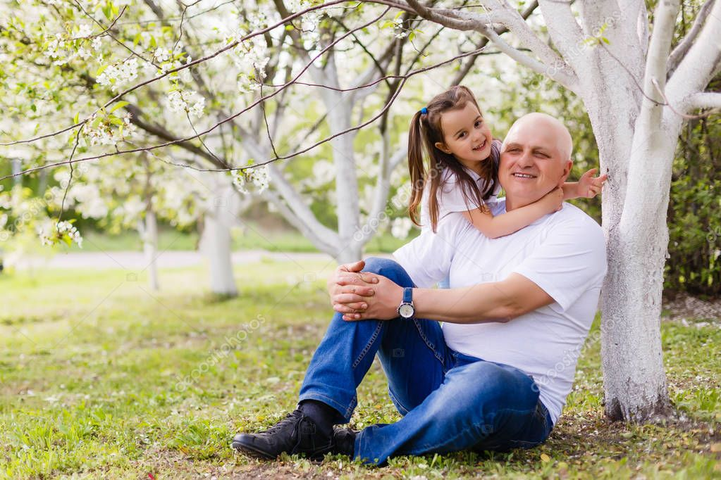 little girl hugging her grandfather sitting under cherry blossoming tree in garden