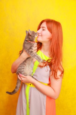 pretty young redheaded girl in long colorful summer dress with her lovely friend grey cat on yellow bright studio background