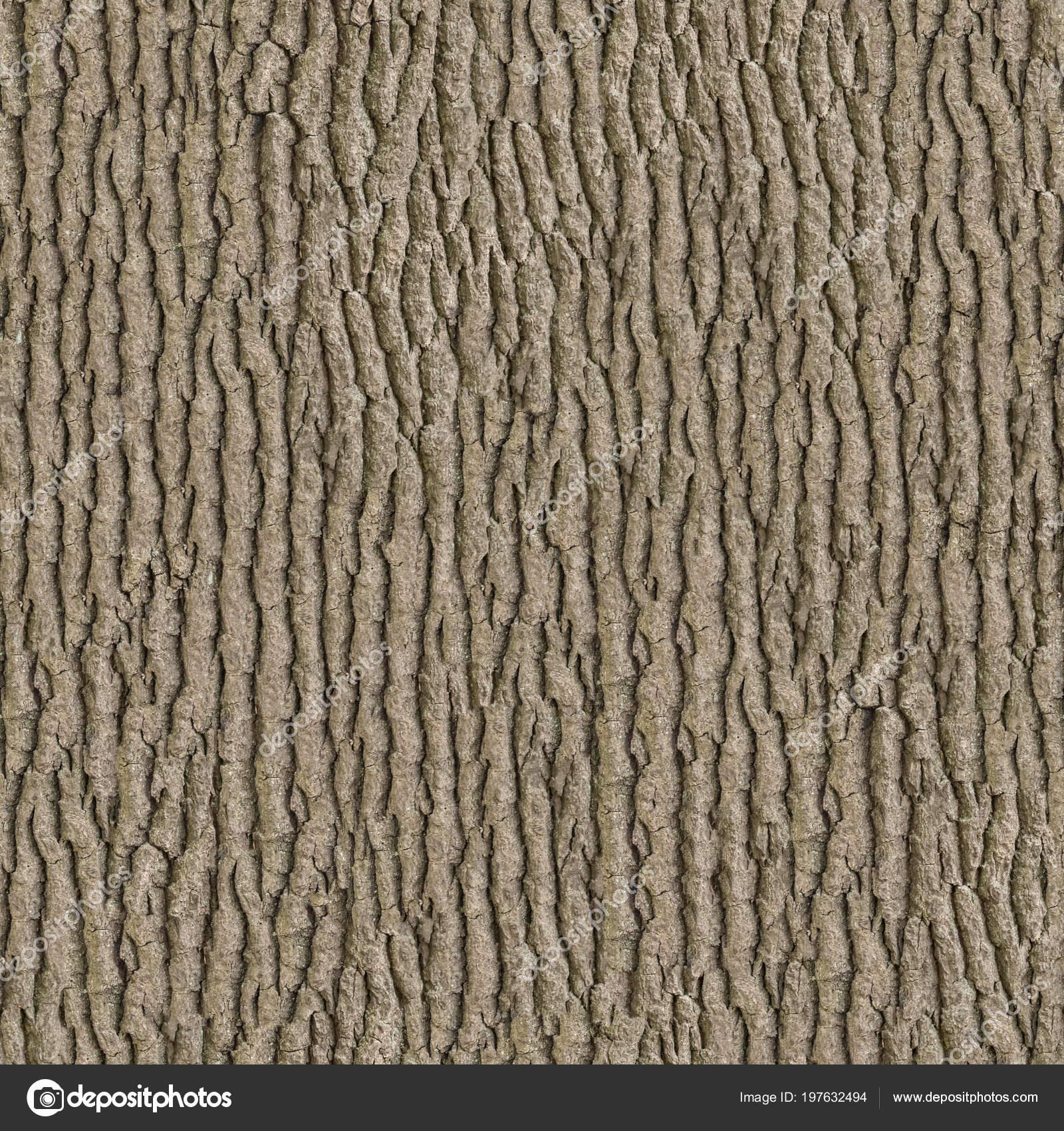 wooden bark seamless tileable texture stock photo tashatuvango