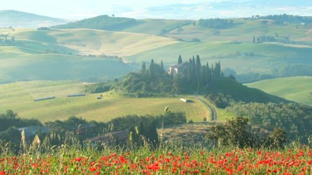 Toskánsko, Itálie - 10 června 2018: Letní pohled krásné zelené kopcovité krajiny s červenými květy máku pole, The cypřiše stromy a budovy na Toskánska v Itálii