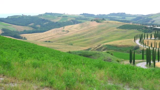 Gyönyörű kilátás nyílik a dombos Toszkána mező parasztház, zöld hullám hills, ciprusok fa és rétek, Olaszország