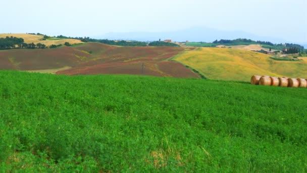 Blick auf eine schöne typische grüne hügelige Landschaft der Toskana mit einem Feld von roten Blumen ein Bauernhaus und eine Reihe von Heuballen in einem Feld im Sommer bei Valdorcia in Italien