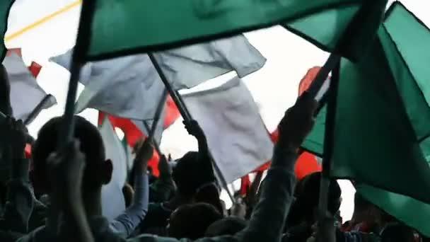 backside view sports fans wave flags on spectators places