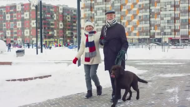 mature couple with dog walks in winter park at buildings