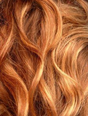 Hair. Hair Texture. Healthy hair