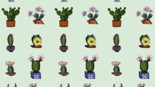kaktuszfirka rajzok háttér kép. animációs videó felvételek