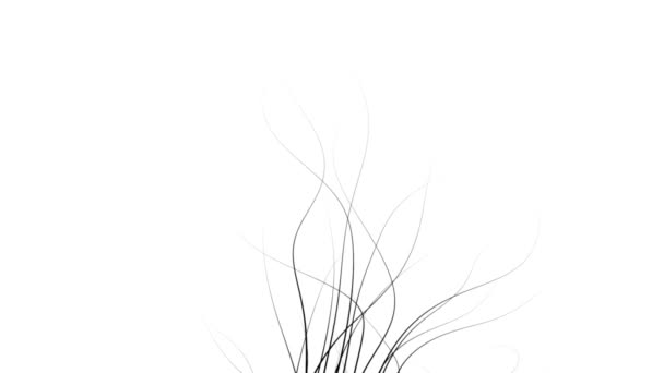Abstract Nature Background In Minimalist Graphic Style Black On White