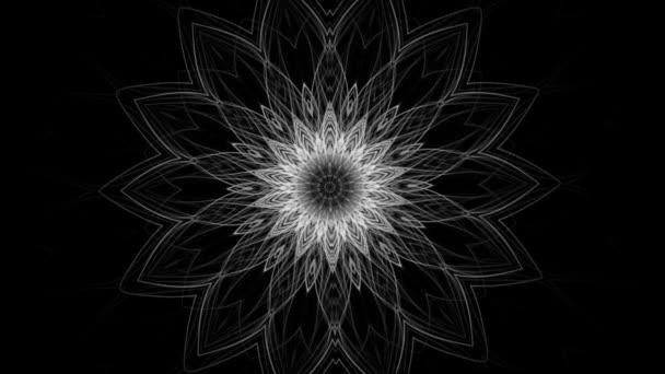 A virág komplex fejlődő mintájának vázlatrajza