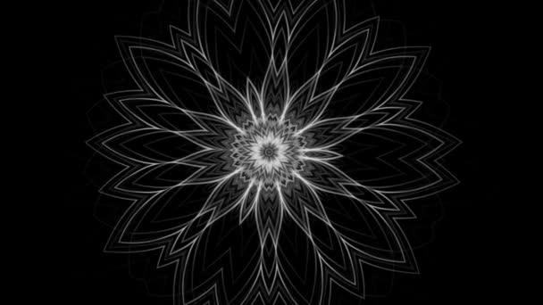 Fekete fehér háttér gyönyörű virágos dísz-zökkenőmentes hurkolás