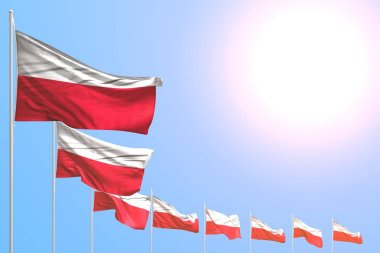 nice many Poland flags placed diagonal on blue sky with space for text - any celebration flag 3d illustration