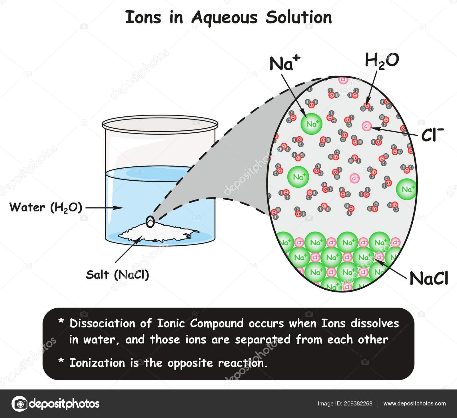 Ions aqueous solution infographic diagram showing dissociation ions aqueous solution infographic diagram showing dissociation reaction sodium chloride stock vector ccuart Gallery