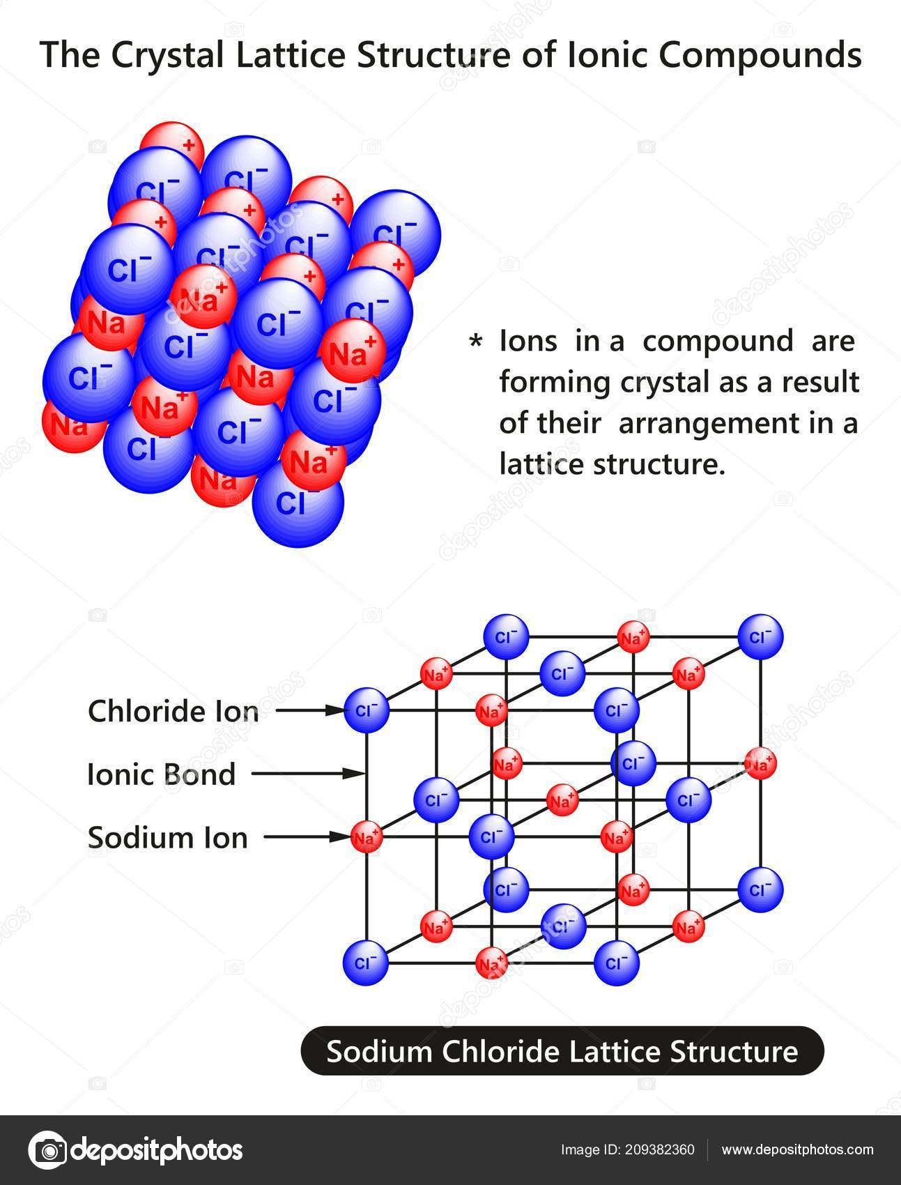 Diagrama Infografía Enrejado Cristalino Estructura Los