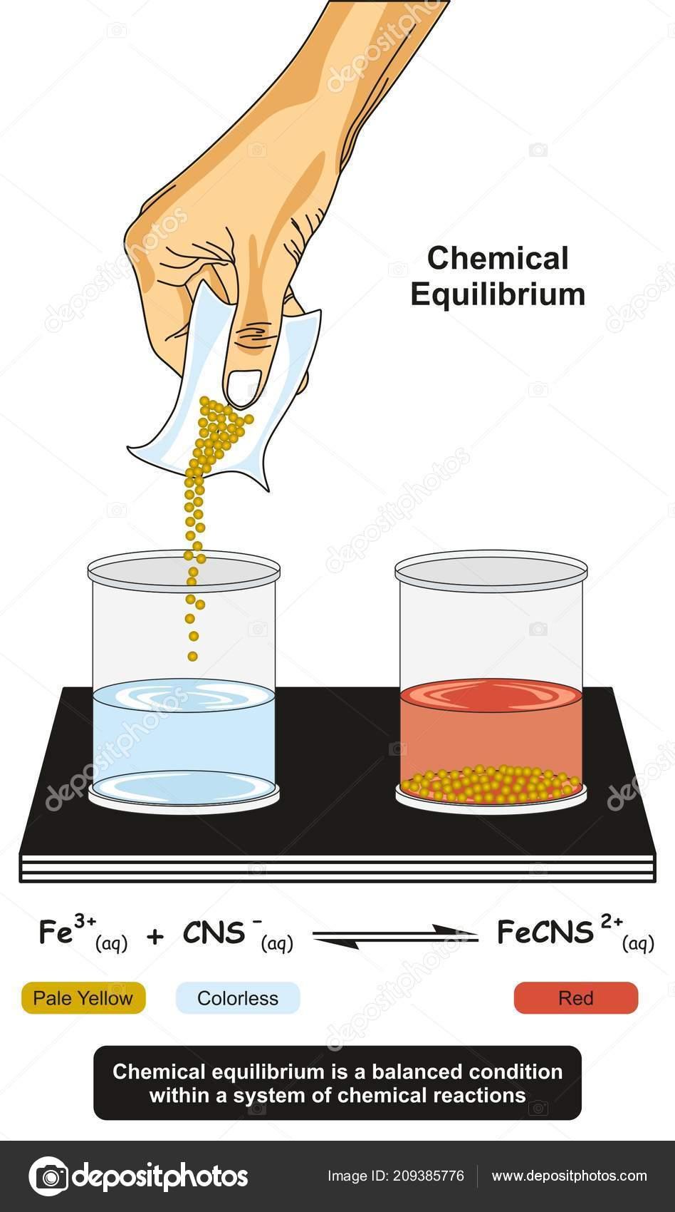 Chemical Equilibrium Infographic Diagram Showing Lab