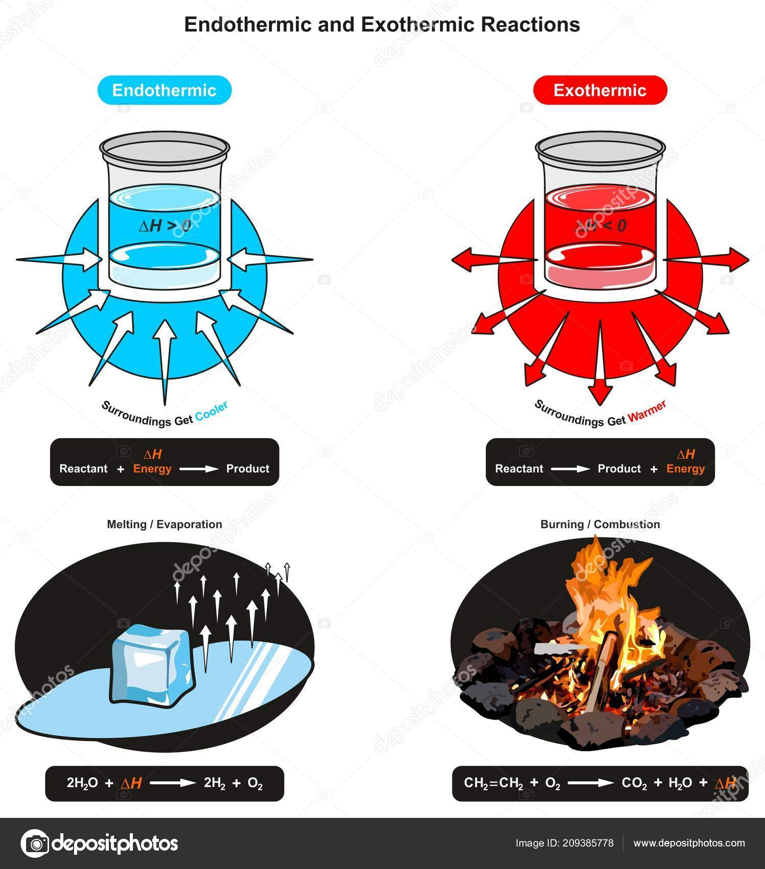 endothermic and exothermic reactions infographic diagram showing relation  between reactant energy and product also examples of ice cube melting and  fire