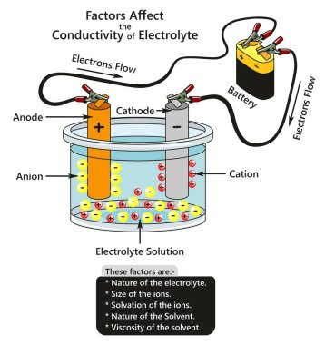 Factors Affect the Conductivity of Electrolyte infographic diagram showing a battery connected to cathode and anode in container contains electrolyte solution ions interaction for chemistry science stock vector