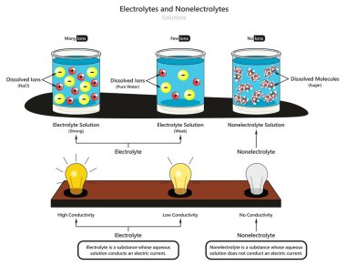 Electrolyte and Nonelectrolyte Solutions infographic diagram showing type of electrolytes weak and strong also comparison of conductivity and dissolved substances for chemistry science education stock vector