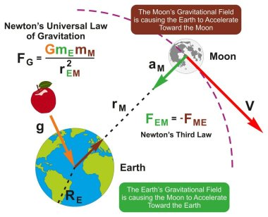 Newtons Universal Law of Gravitation infographic diagram with formula and example of earth and moon attraction of each other according to their masses for physics science education